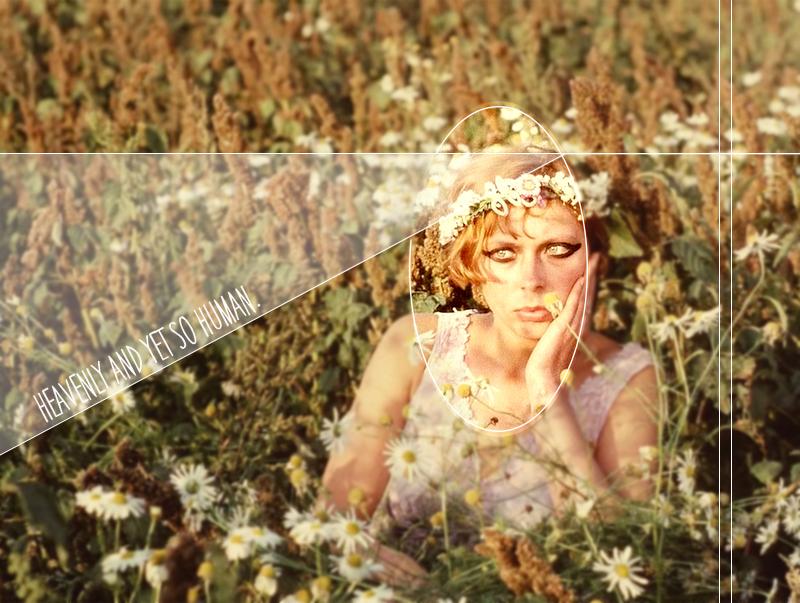 Daisies sedmikrasky